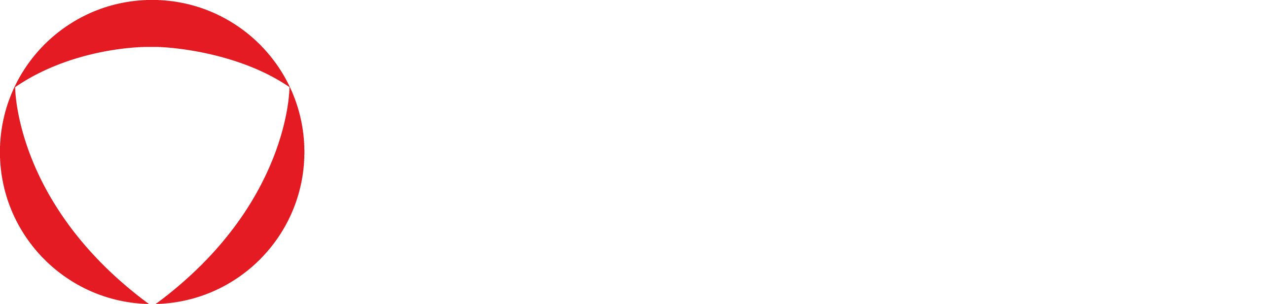 Protegrity logo