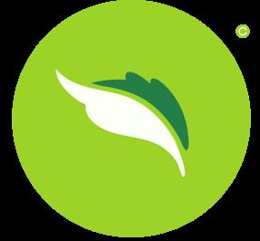 Nana logo