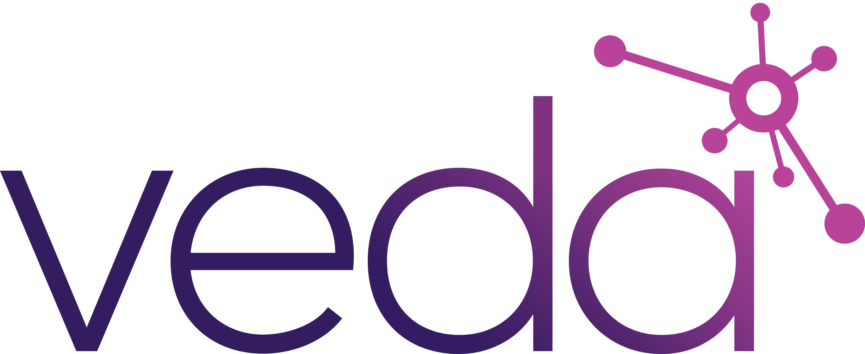 VEDA Data Solutions logo